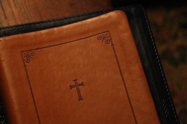 Просветительский центр насеверо-востокестолицы объявил остарте набора подвум направлениям