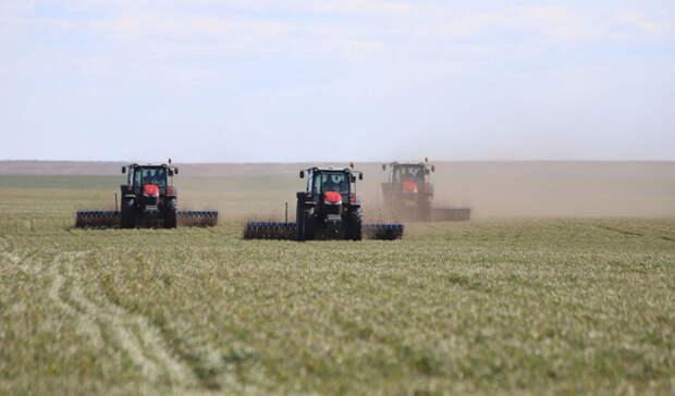 В 29 муниципалитетах Оренбуржья начались полевые работы