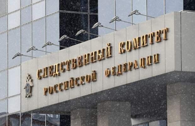 СК возбудил уголовное дело за призывы к несовершеннолетним выйти на акцию 23 января