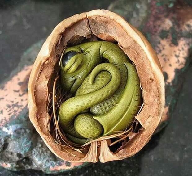 Щёлкаем орешки: скорлупа грецкого ореха как материал для вашего творчества, фото № 29