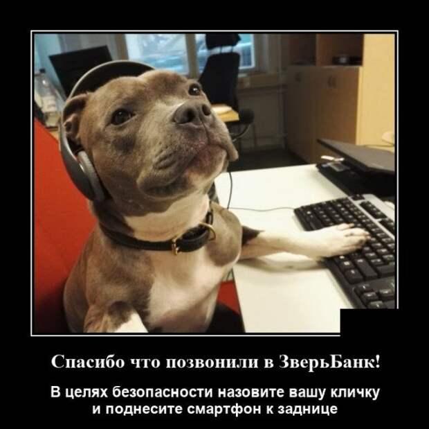 Демотиваторы про банки