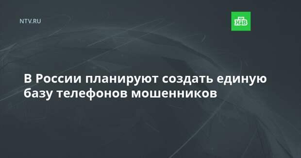 В России планируют создать единую базу телефонов мошенников