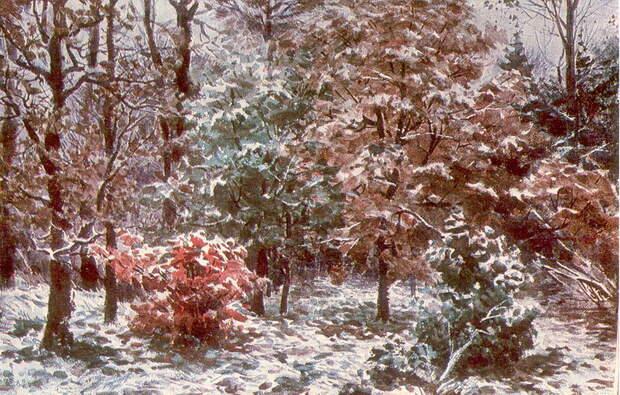 Андрияка Сергей Николаевич : Снег в сентябре