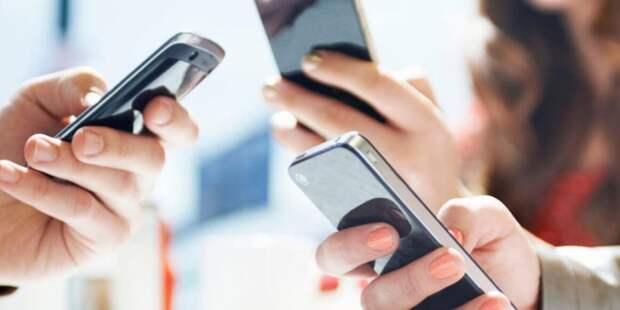 Онлайн-избиратели поспорят с МВД