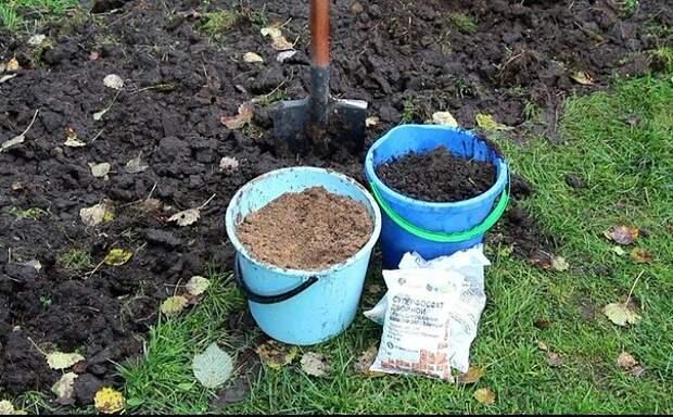 Какие удобрения вносить осенью под перекопку в почву?