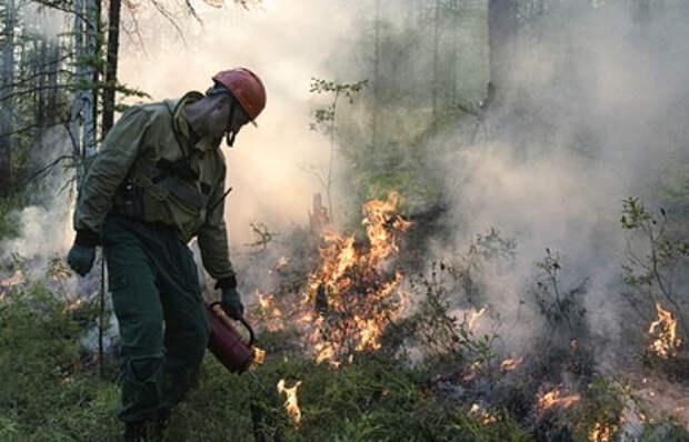 Названы причины масштабных пожаров и наводнений в России