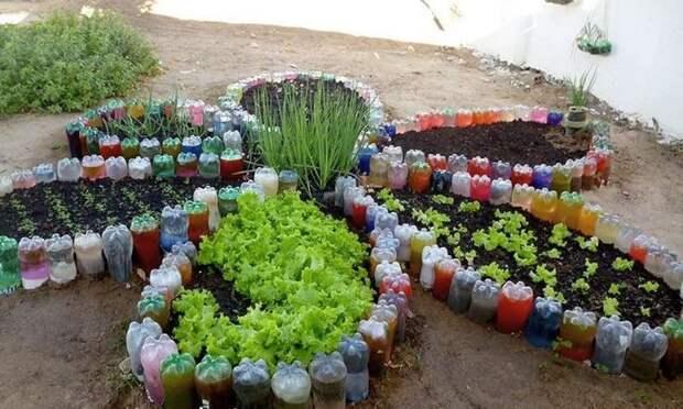 Клумбы для цветов из пластиковых бутылок – все пойдет в дело