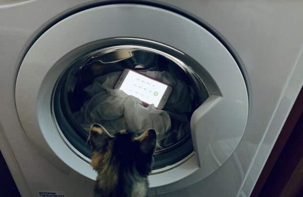 Что делать, если нужно срочно открыть стиральную машину во время стирки?