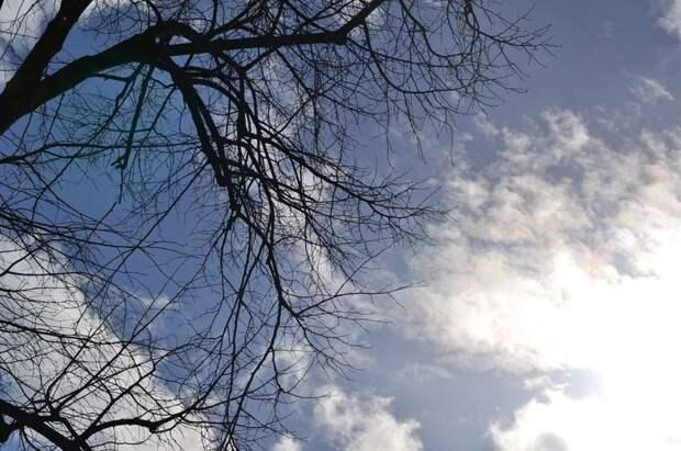 Облачно с прояснениями будет в Удмуртии в среду