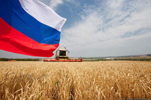 Белгородская область. Уборка урожая.: varlamov.ru — LiveJournal