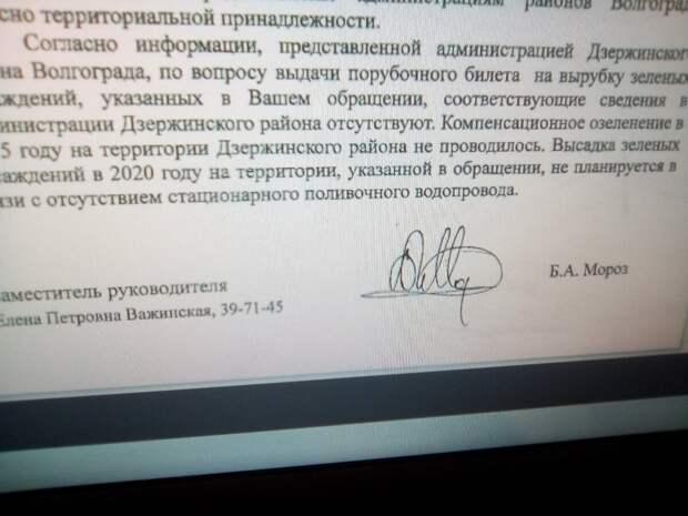Фото из письма-ответа областного департамента.