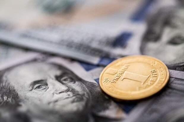 Скубченко заявил, что МВФ – единственная надежда Украины на спасение