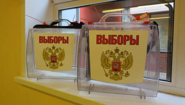 Почти 79% проголосовавших в Подмосковье поддержали поправки в Конституцию России