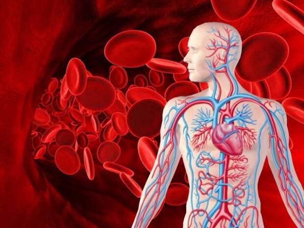 Симптомы и неочевидные нюансы низкого гемоглобина