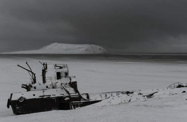 Андрей Шапран: - Безголосые, неподвижные, они стоят, на берегу, залитые накатом, с обвисшими чудовищными ледяными сосульками на своих конечностях.