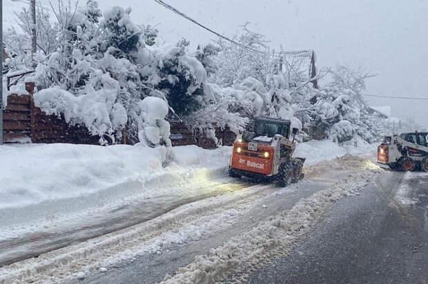 В Сочи снегопад валит деревья