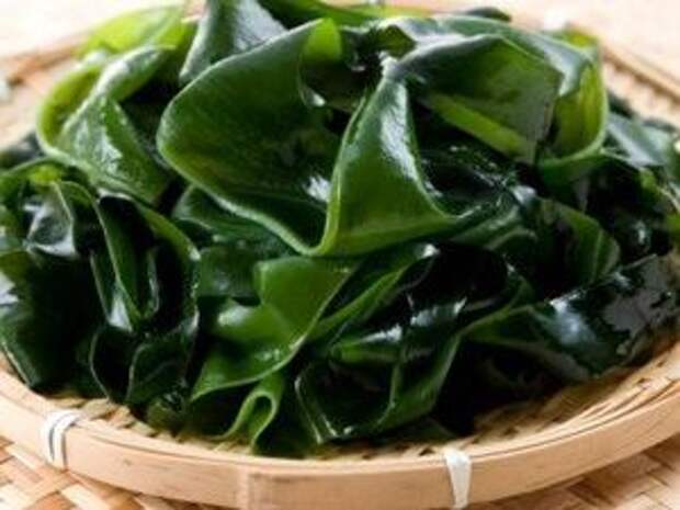 Уникальные свойства съедобной водоросли