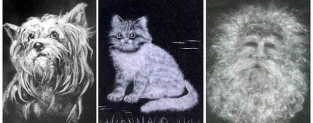 Удивительные картины из тополиного пуха