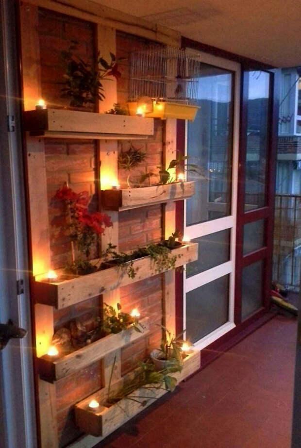 Вертикальный сад с подсветкой. | Фото: Pinterest.