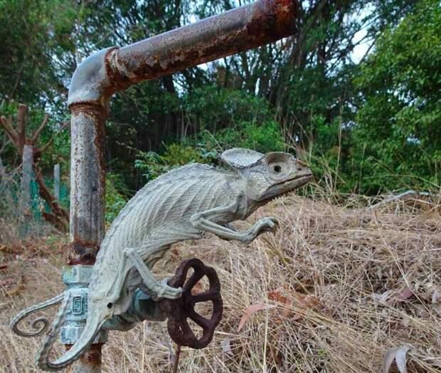 30. Хамелеон, превратившийся в мумию животные, мир, подборка, природа, ужас, фото, явление