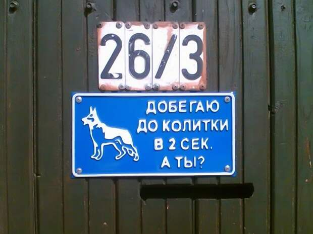 Таблички, правдивость которых не хочется проверять животные, прикол