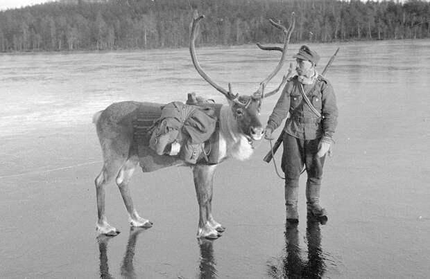 Финляндия во Второй мировой войне
