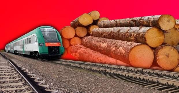 На Байкале вырубят леса ради строительства железных дорог
