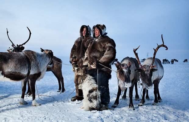 tundra_01-800x516