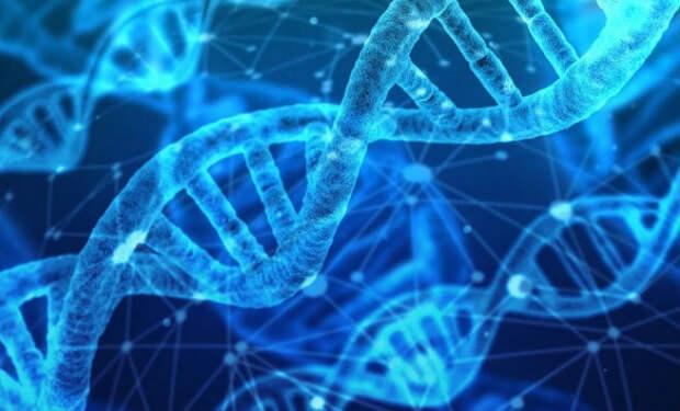 В генах части африканских народностей нашли следы неизвестного науке типа людей