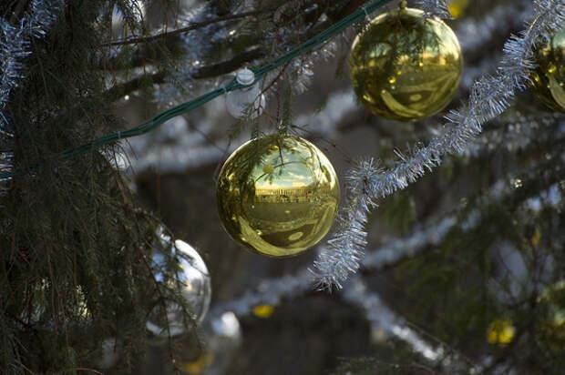 Рождество 25 декабря: правильно ли считать его «католическим»?