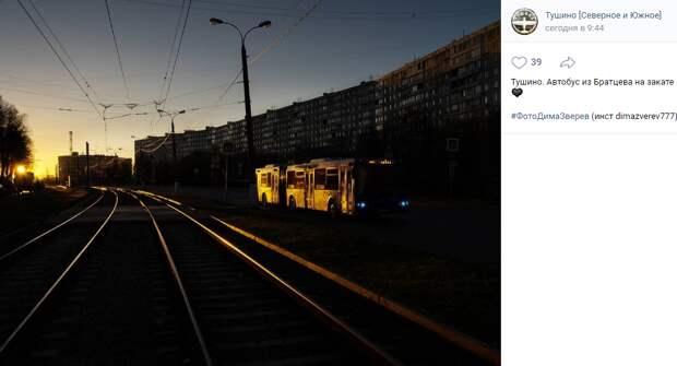 Фото дня: автобус, закат, Тушино