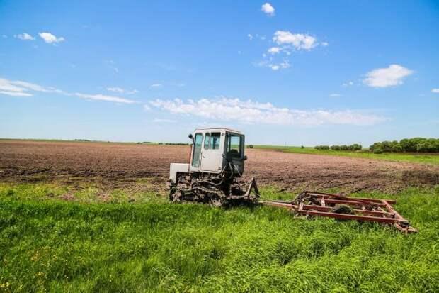 Правительство РФ подготовило программу вовлечения земель в сельхозоборот