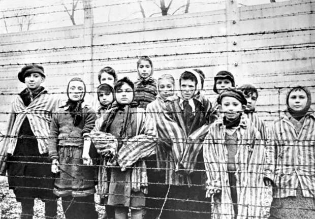 Жуткий тренд вTikTok— видеоролики с«жертвами Холокоста» итерактов