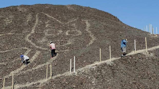 Археологи обнаружили гигантское изображение кошки во время раскопок на территории плато Наска в южной части Перу.