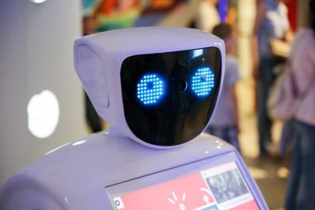 Где искать работу, когда тебя заменит робот