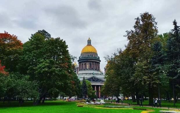 Пауза в дождях: какой погоды ждать в Петербурге