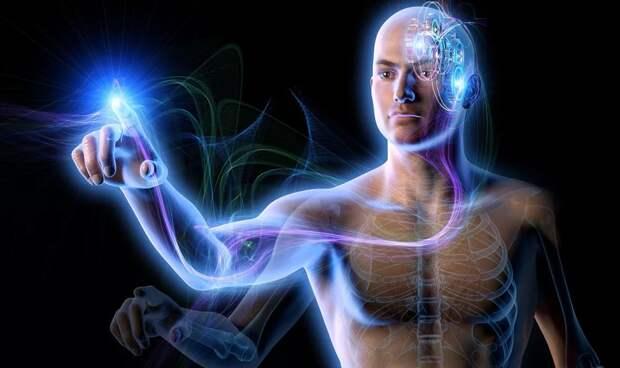 В каком направлении будет происходить эволюция человека