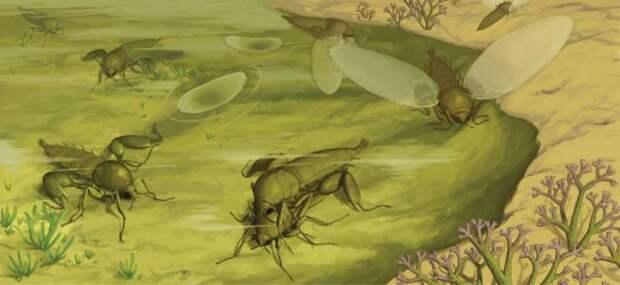 Страшила невероятная  (лат. Strashila incredibilis)