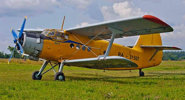 """Где теперь АН-2 или наследие """"Кукурузника"""": как и зачем спасать малую авиацию в России"""