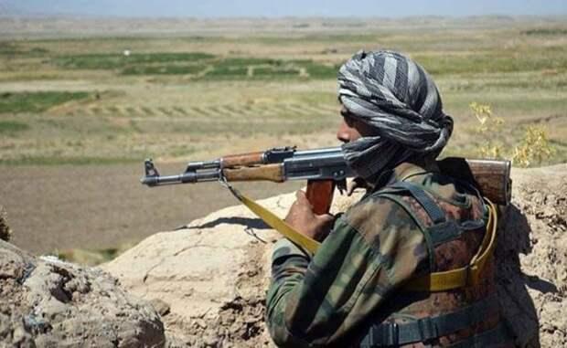 СМИ сообщили о казни афганского певца, критиковавшего террористов