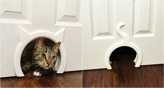 Квартирные идеи для кошек: 36 идей доказать, что они - члены вашей семьи