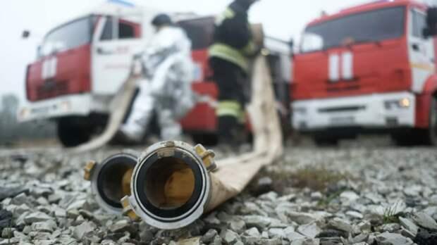 Власти Томской области объявили о начале пожароопасного сезона