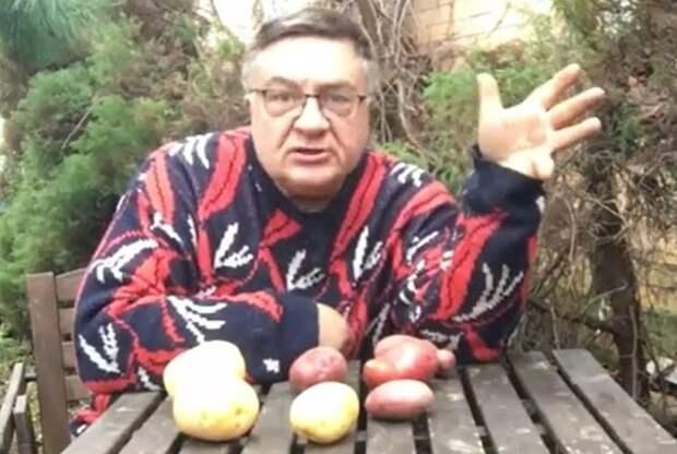 Андрей Туманов о борьбе с проволочником