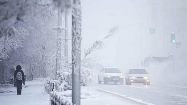 Морозы в Петербурге признали более опасными, чем «барическая пила» в Москве