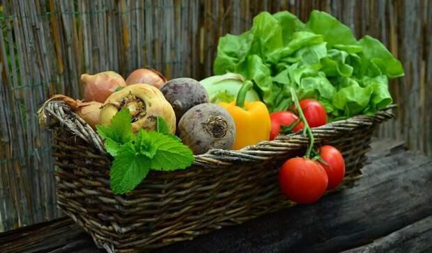 Больше всего вРостовской области вфеврале подорожали овощи