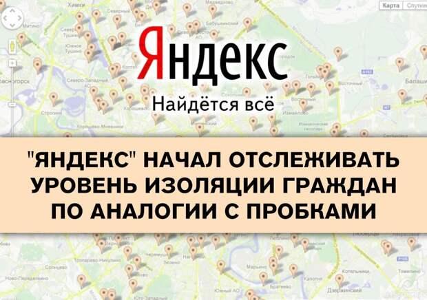Счетчик «Яндекса» определит добросовестность жителей на самоизоляции