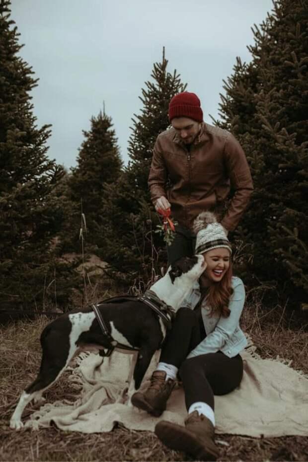 16 прелестных и комичных аргументов в пользу того, что песики непременно украсят семейные фото