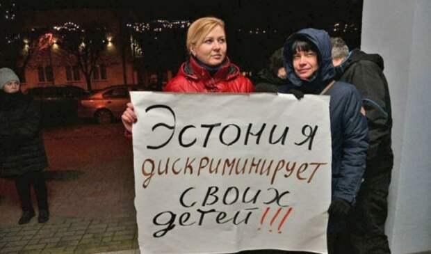 Фейк РИА «Новости»: в Эстонии русскоязычных детей лишают права на образование - «Антифейк»