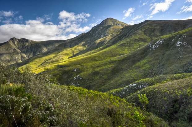 Самые удивительные факты о ЮАР, которых вы не знали