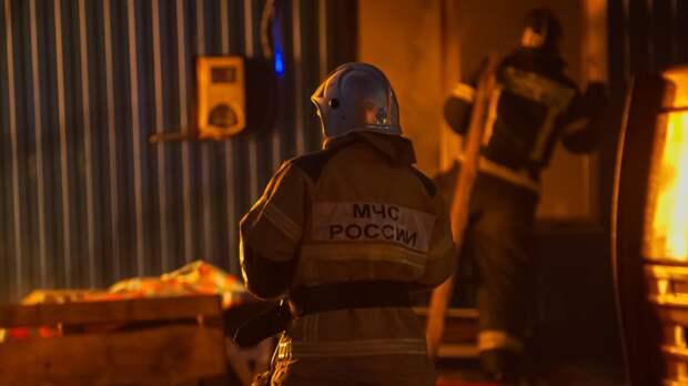 Спасатели нашли трупы двух подростков на месте пожара в Ленобласти